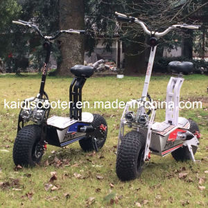 off-Road Folding Electric Mobility Scooter 1600W Fat Tire E-Scooter pictures & photos