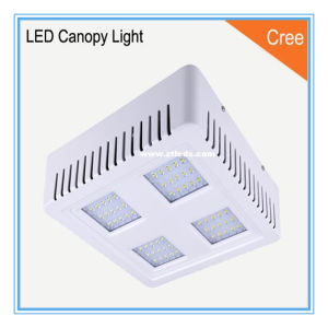 AC90-305V IP65 120W LED Canopy Lamp with CREE LED Chip