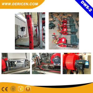 Dericen Dws2 Touchless Car Wash Equipment with High Pressure Tire Wash pictures & photos
