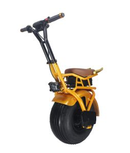 Fashion 18 Inch Self Balancing One Wheel Electric Motorcyel Monocycle pictures & photos