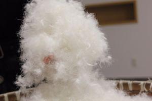 EU USA Japan 70% White Duck Down as Filling Materials