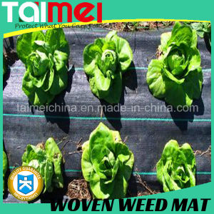Agriculture Weed Control PP Non Woven Fabric pictures & photos