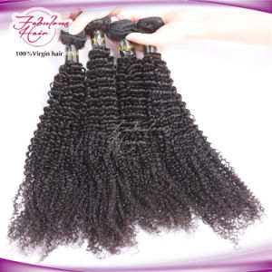 100% Kinky Curly Virgin Brazilian Human Hair Weaving pictures & photos