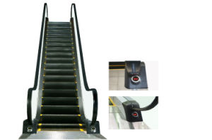 30 Degree Escalator with Superior Steel Structure pictures & photos