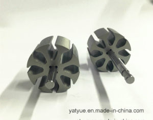 Micro Motor Parts Rotor 33.8mm X 8p pictures & photos