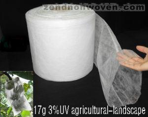 5%UV Polypropylene Nonwoven Banana Sleeve pictures & photos