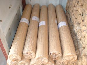 Electro Galvanized Welded Wire Mesh 1mm-3mm Low Price China Anping Yaqi pictures & photos