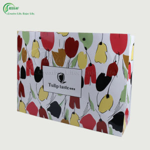 Colorful Paper Bag (KG-PB038) pictures & photos