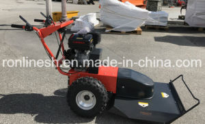 14HP Engine Powred Field and Lawn Mower/Brush Mower/Disc Mower/Mulch Mower with Cutting Height 100mm pictures & photos