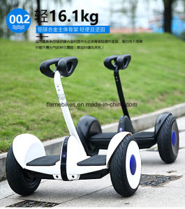 Two Wheels Self Balance Mini Motor with 700W Motor pictures & photos