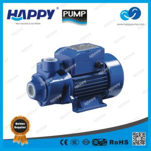Electric Vortex Water Pump QB pictures & photos