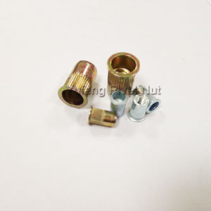 Carbon Steel Small Head Knurled Body Rivet Nut pictures & photos