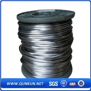 304, 316 Stainless Steel Wire pictures & photos