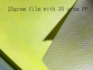PP Spunbond Non Woven Anti-Slip Material Coated PE Film pictures & photos