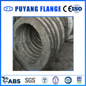 Aluminum Plate Forged Pieces (PY00108) pictures & photos