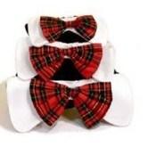 New Design Pet Bow Tie Necklace pictures & photos