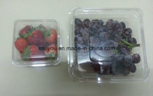 Take out Plastic Pet Fruit Box with Ventilated Holes pictures & photos