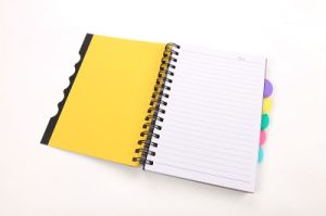 High Quality Custom-Made Stationery Spiral Notebook Printing pictures & photos