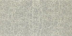 Granite Design 600X1200mm 4.8mm Porcelain Thin Tile pictures & photos