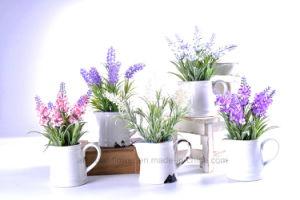 Kinds of Artificial Floking Flower Lavender in Ceramic Pot for Decoration