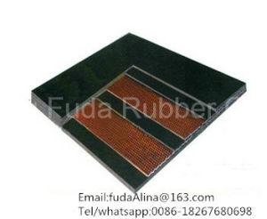 China Wholesale High Quality Heat Resistant Coal Belt Conveyor pictures & photos