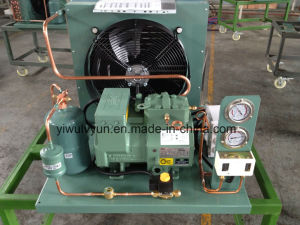 Semi-Hermetic Air-Cooled Bitzer Condensing Unit pictures & photos