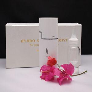 Handy Nano Mist Sprayer Cuatomizable Beauty Equipment Facial Steamer pictures & photos