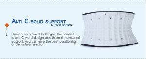 Lumbar Support Cushion pictures & photos