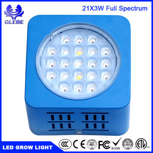 LED Grow Light Lamp 100W Plant Grow Light with Full Spectrum for Indoor Plants Greenhouse and Hydroponic Growing pictures & photos