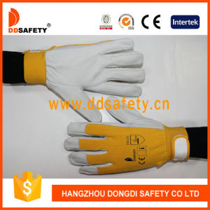 Ddsafety 2017 Pig Grain Leather Blue Elastic Cotton Back Wrist with Velcro Fastener pictures & photos