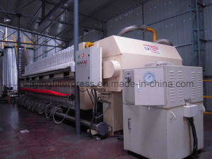 Palm Oil Fractionation Filter Press X100/1000 pictures & photos