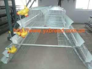 Egg Laying Hen Wire Mesh Cages for Sale (A3L120) pictures & photos