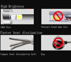 Car Headlight Spiderman 12V LED Plug and Play H1 H3 H4 H7 H11 9006 9007 Super Bright LED Headlight Bulb pictures & photos