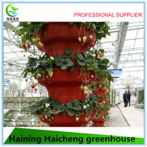 Hydroponic Glass Greenhouse with Outside Shading System pictures & photos