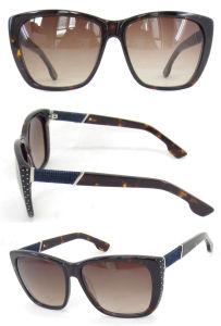 New Arrival Fashion Big Shape Ladies Acetate Sunglasses pictures & photos
