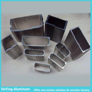 Competitive Aluminum/Aluminium Extrusion Profile Case pictures & photos