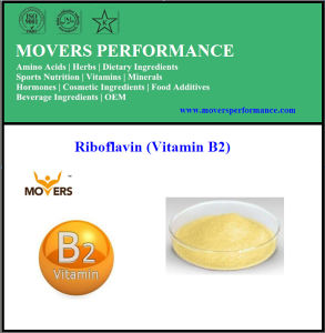 High Quality Low Price Food Grade Riboflavin (Vitamin B2) pictures & photos