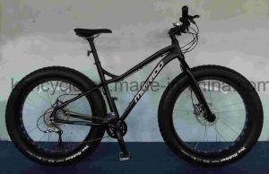 Fat Tire Mountain Bicycle Bike/Chopper Beach Cruiser Bicycle Bike/4.0 Fat Tire Beach Cruiser Bicycle Bike/Fat Bike pictures & photos