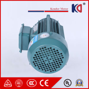 Professional Three Phase Ys Series Induction Motor pictures & photos