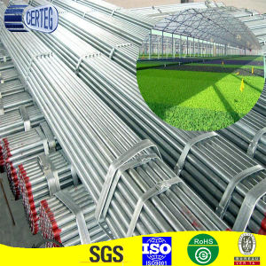 Galvanized Steel Pipe with Discount pictures & photos