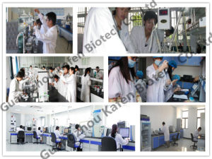 Npp Nandrolone Phenylpropionate Anabolic Raw Powder 62-90-8 pictures & photos
