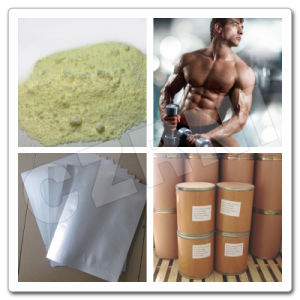 High Purity GMP Grade Trenbolone Acetate Hormone Steroid pictures & photos