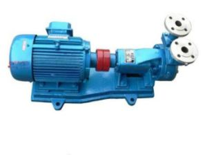 Ngcw-B High Temperature Insulation Magnetic Drive Peripheral Pump pictures & photos