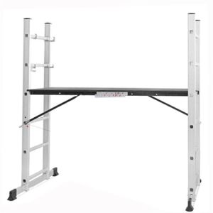 2X6 Aluminium Scaffold Ladder with En131 Certificate pictures & photos