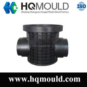 Professional Supplier for PE Fitting Injection Mould pictures & photos