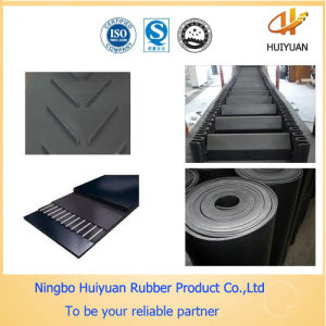 Nylon Conveyor Belt for Conveying Wood Chips pictures & photos