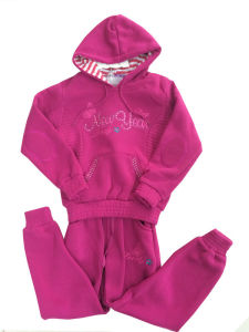 Fashion Girl Hoodies, Children Hoodies with Zipper in Children Clothing (SWG-112) pictures & photos