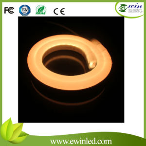 IP65 SMD3528 12V LED Flexible Neon pictures & photos