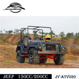 New Design 200cc Pedal Buggy for Teanage pictures & photos