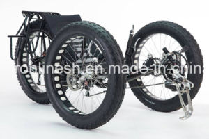 26X4 Wide/Fat Tire 3 Wheeler Bike/Three Wheel Bicycle/Fatty Trike/Snow Tricycle/Fat Trike/Sand Trike/All Terrain Tricycle pictures & photos